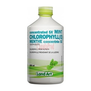 Land Art - MINT CHLOROPHYLL 5X (민트 엽록소) 500 ML